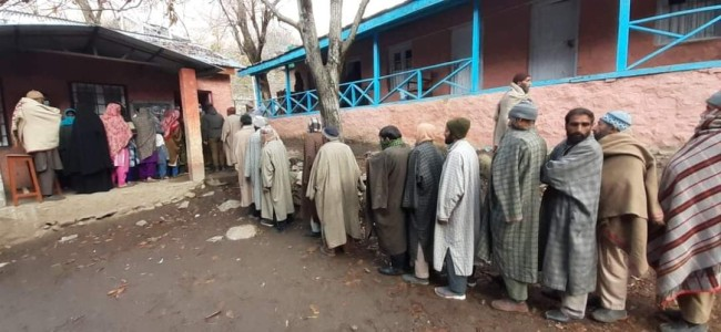 DDC polls: 28 per cent voter turnout in central Kashmir's Ganderbal till 11 AM