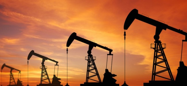 Oil subsidy bill can be slashed by half in next fiscal